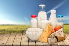 Dairy products collection on green light stock photo