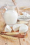 Dairy products and grains. Milk, tzfat cheese and cottage cheese with wheat grains. Symbols of judaic holiday Shavuot. Selective focus Stock Photo