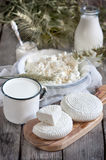 Dairy products and grains Stock Images