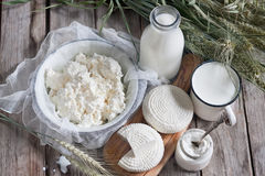 Dairy products and grains Royalty Free Stock Images