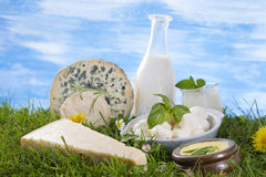 Dairy products on the grass Royalty Free Stock Photo
