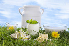 Dairy products on the grass Royalty Free Stock Photography
