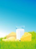 Dairy products lying on green grass - vector Stock Images