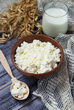 Dairy products milk and cottage cheese for jewish holiday Shavuo Royalty Free Stock Image