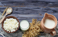 Dairy products: milk, cottage cheese, sour cream. Selective focus. Copy space background Stock Photography