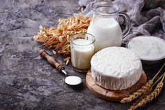 Dairy products milk, cottage cheese, sour cream and wheat. Selective focus royalty free stock images