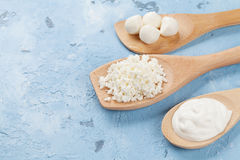 Dairy products spoons. Over stone table. Sour cream, cheese and curd Royalty Free Stock Photo