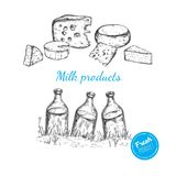 Dairy products vector collection Stock Image