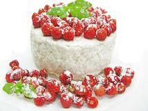 Dairy pudding dessert with wild strawberry berries Stock Photo