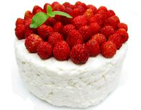 Dairy pudding dessert with wild strawberry berries Stock Images