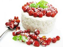 Dairy pudding dessert with wild strawberry berries Stock Photos