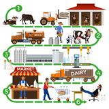 The dairy supply chain. Production stages and processing of milk. The dairy supply chain: from farm to consumer. Vector illustration vector illustration