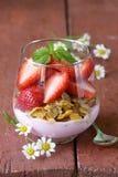 Dairy yogurt dessert with muesli Royalty Free Stock Photography
