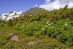 Daisetsuzan National Park, Hokkaido, Japan Stock Photos
