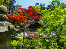 Daisho-in Temple in Miyajima, Japan Stock Photos