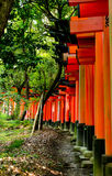 Daisha d'Inari Photographie stock