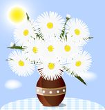 Daisies. Against the blue sky on the table is a vase with large daisies Royalty Free Stock Photo