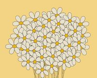 Daisies. Bouquet of dasies illustrated Royalty Free Stock Photo