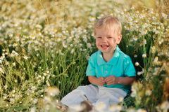 Daisies and baby Stock Photos