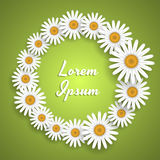 Daisies background royalty free illustration