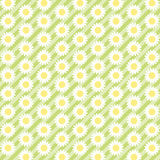 Daisies background 7. Retro background as daisies field Stock Photos
