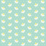 Daisies background 8. Retro background as daisies field Stock Photography