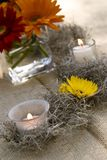 Daisies and candle Royalty Free Stock Photo