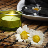 Daisies and candle before pebbles Stock Image