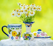 Daisies and cup Royalty Free Stock Photography