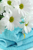 Daisies on Folded Towels Stock Images