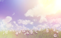 Daisies in grass on a sunny day with retro effect. 3D render of daisies in grass on a sunny day with retro effect Royalty Free Stock Image