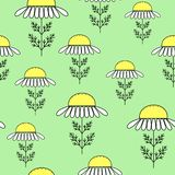 Daisies on a green background. Suitable as a texture for gift wrapping. Vector illustration vector illustration