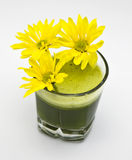 Daisies in green juice Stock Images