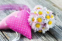 Daisies with hearts Stock Photography