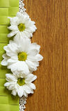 Daisies and lace on wooden background Stock Photos