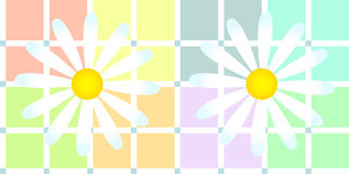 Daisies over soft pastel plaid Royalty Free Stock Photo