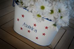 Daisies in a patriotic tin Royalty Free Stock Photography