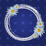 Daisies  pattern Stock Images