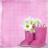 Daisies in a pink boot Royalty Free Stock Image