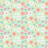 Daisies seamless pattern. Daisies  seamless retro pattern in shabby chic style Royalty Free Stock Image