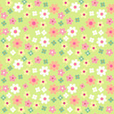 Daisies seamless pattern. Daisies  seamless retro pattern in shabby chic style Royalty Free Stock Photography