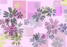Daisies and squares. Background, soft lavender tone Royalty Free Stock Photography