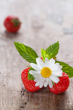 Daisies and strawberries Stock Images
