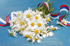 Daisies and tricolor ribbon. Day of Peter and Fevronia Royalty Free Stock Image