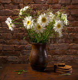 Daisies in vase and bakery pieces of bread Royalty Free Stock Image