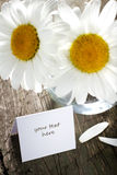 Daisies in vase and paper card Royalty Free Stock Photography