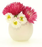 Daisies in a vase Stock Photo