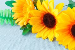 Daisies. Yellow fabric daisies on blue cloth background Stock Photos