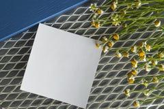 Daisy με μια αυτοκόλλητη ετικέττα σε ένα άσπρο υπόβαθρο πλέγματος με το μπλε Στοκ φωτογραφίες με δικαίωμα ελεύθερης χρήσης