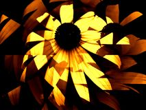 Daisy Abstract in Yellow and Brown. Abstract of white daisy in brown and light yellow with whirling petals Stock Photos